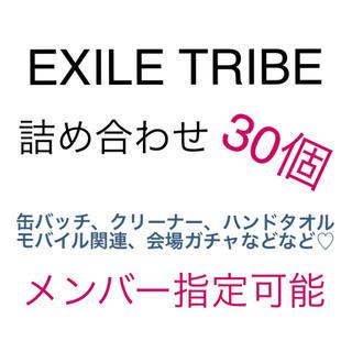 エグザイル トライブ(EXILE TRIBE)のEXILE TRIBE 詰め合わせ 30個(ミュージシャン)