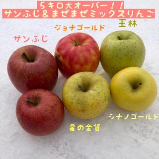訳あり☆まぜまぜミックスりんご 5キロ大オーバー!!(フルーツ)