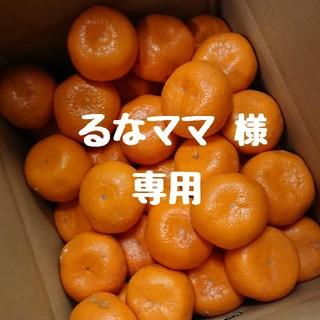【るなママ 様 専用】大玉‼️和歌山県産中生みかん 10㎏箱満杯(フルーツ)