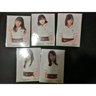 ケヤキザカフォーティーシックス(欅坂46(けやき坂46))の欅坂46 マネパカード特典生写真 5枚セット(アイドルグッズ)