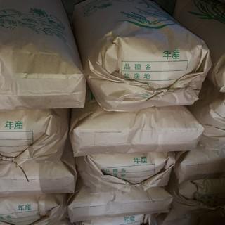 農家直送 新米です24kg精米送料無料(米/穀物)