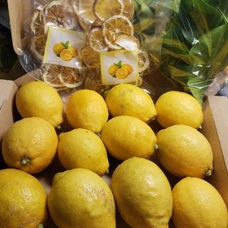 完全無農薬レモン広島ブランド種!大崎下島産!フレッシュ葉っぱとドライレモン2!