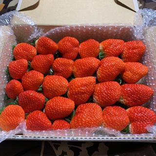 ゴロゴロ大粒●さがほのか苺800g●いちご イチゴ