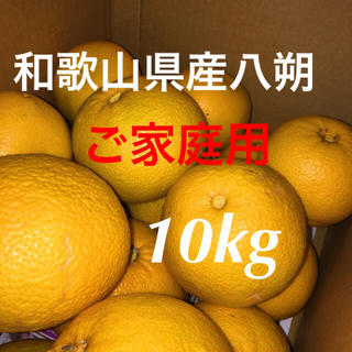 和歌山県産八朔10kgご家庭用