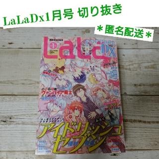 LaLaDx1月号(12月発売) 切り抜き