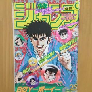 週刊少年ジャンプ 1995年 25号 (漫画雑誌)