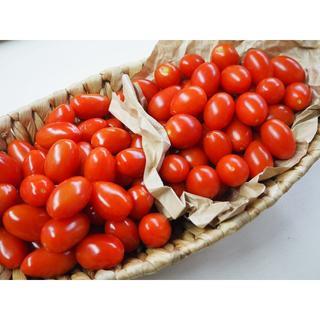 アイコトマト&グミニートマト 食べ比べお試しBOX(野菜)