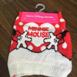 ディズニー(Disney)のミニー 腹巻 新品(アンダーシャツ/防寒インナー)