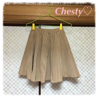 チェスティ(Chesty)の♡まいまい メモリースカート♡(ひざ丈スカート)