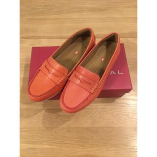 クラークス(Clarks)の新品☆C larksレディース シューズ(ローファー/革靴)