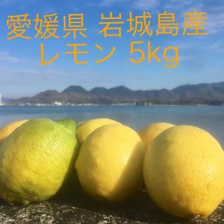 愛媛県 岩城島産レモン 5kg(フルーツ)