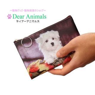 犬 ワンちゃんコインケース・小物入れ 新品未使用品 送料無料 001(犬)