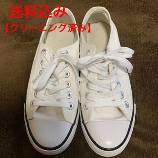 ジーユー(GU)の【GU】コンバース風 スニーカー ホワイト【23cm】(スニーカー)