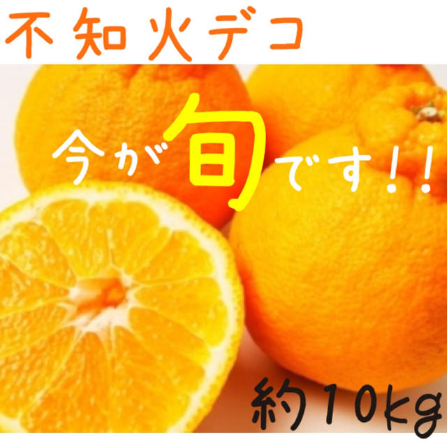 【数量限定】不知火デコ約10kg☆1 食品/飲料/酒の食品(フルーツ)の商品写真