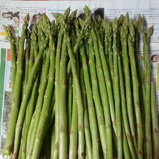 ぷーさん様専用佐賀県産グリーンアスパラ1キロ(野菜)