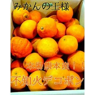 るう様専用 本場熊本産みかんの王様不知火デコポン約10kg 送料無料1(フルーツ)