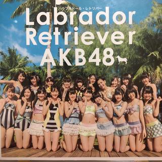 エーケービーフォーティーエイト(AKB48)のラブラドール・レトリーバー(CDJ)