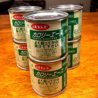 デビフ(dbf)の猫用流動食▪カロリーエース6缶▪おまけ付(ペットフード)