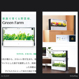 水耕栽培  GREEN FARM(その他)