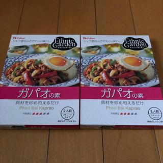 ハウスショクヒン(ハウス食品)のエスニックガーデン☆ガパオ2箱(その他)