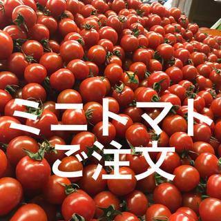 ミニトマト ご注文フォーム(野菜)