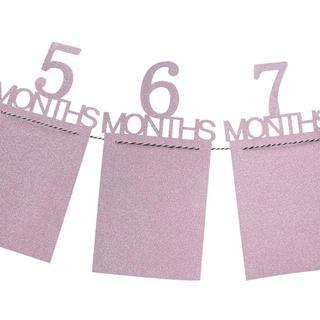 フォトガーラント ピンクラメ♡12ヶ月の成長が良く分かる♩パーティーにお勧め(フォトフレーム)
