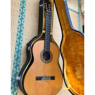 フェルナンデス(Fernandes)のクラシックギター  GC20 お値下しました!(クラシックギター)