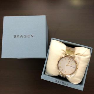 スカーゲン(SKAGEN)のSKAGEN【スカーゲン】HALD  SKW2713  レディスー正規輸入品(腕時計)