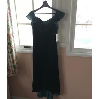 アンナルナ(ANNA LUNA)のANNA  LUNA タグ付き新品ドレス(ロングドレス)