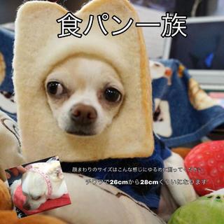 食パンのかぶりもの(おもちゃ/ペット小物)