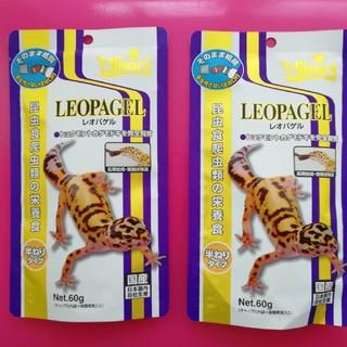 レオパゲル2個(爬虫類/両生類用品)