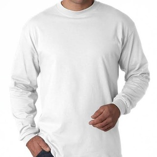 ヘインズ(Hanes)のHanes Beefy Tシャツ メンズSサイズ ホワイト(Tシャツ/カットソー(七分/長袖))
