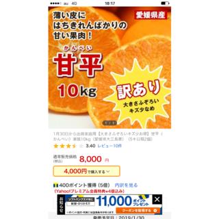 ひとめアリスさま専用。不足分300円(フルーツ)