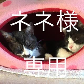 アラシ(嵐)のネネ様 専用☆アロマストーン (アロマ/キャンドル)