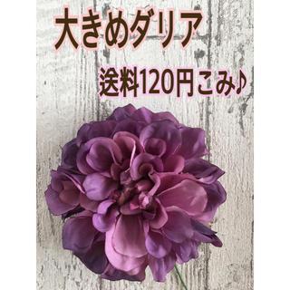 180☆高品質ダリア パープル(その他)