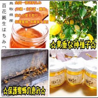 今だけ柚子3玉付き♪国産純粋生蜂蜜(百花)200g瓶(フルーツ)