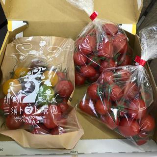 〈お試し用〉フルティカ&ミニトマトセット(野菜)