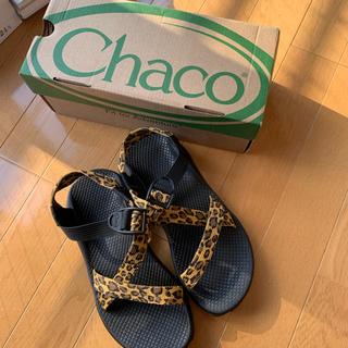 チャコ(Chaco)のChacoサンダル(サンダル)