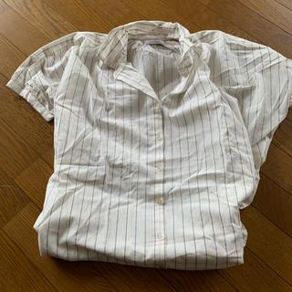 シマムラ(しまむら)の半袖 ストライプ ブラウス(シャツ/ブラウス(半袖/袖なし))