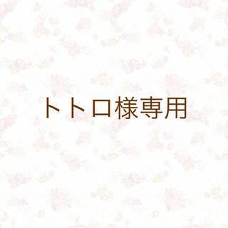 トトロ様専用 ※樹脂フック(クリア)(ピアス)