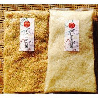 お試しセット♪岡山県備前市産「アヒルのお米」H30年度産3合白米1袋・玄米1袋(米/穀物)