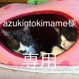 azukintokimame様 専用☆ふくろうさん 3個アロマストーン (アロマ/キャンドル)