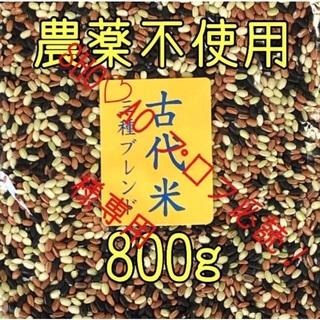 SHO♡AO プロフ必読!様専用  古代米3種ブレンド 愛媛県産 800g×2(米/穀物)