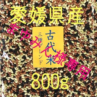 まゆみん様専用  古代米3種ブレンド 愛媛県産 800g(米/穀物)