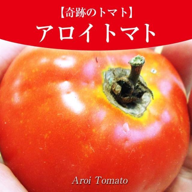 奇跡のトマト】アロイトマトの種10粒(激レア品種)一般的に手に入らない品種~ 食品/飲料/酒の食品(野菜)の商品写真