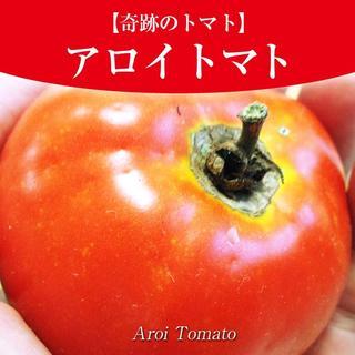 奇跡のトマト】アロイトマトの種10粒(激レア品種)一般的に手に入らない品種~(野菜)