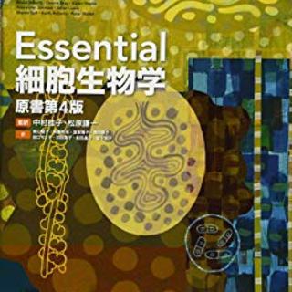 分子細胞生物学 エッセンシャル(語学/参考書)