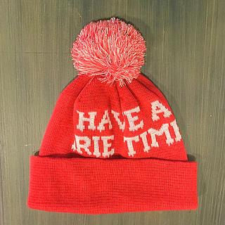 アイリーライフ(IRIE LIFE)のIRIE ニットキャップ 新品 スキー スノーボード(ニット帽/ビーニー)