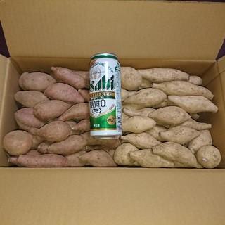 安納芋 & 種子島ゴールド 詰め合わせ SSサイズ 5キロ(野菜)