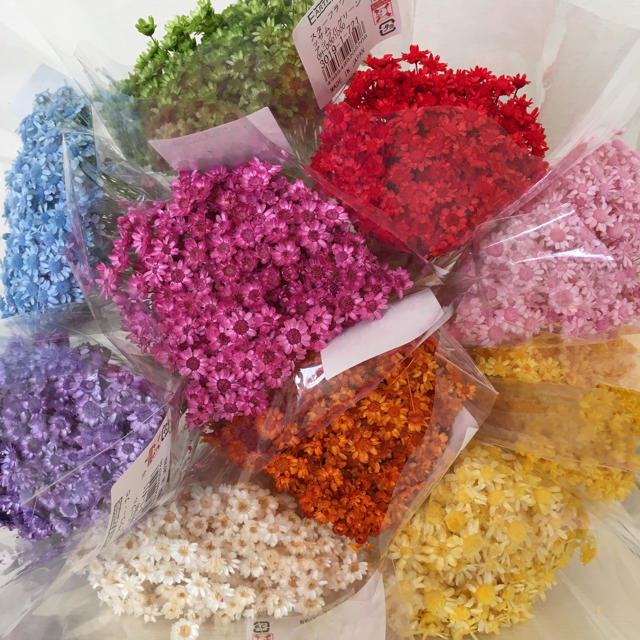花材 スターフラワー ブロッサム♡100本アソート ハンドメイドのフラワー/ガーデン(ドライフラワー)の商品写真